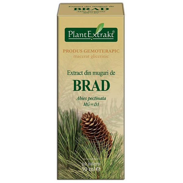PlantExtract Extract din muguri de brad 50 ml