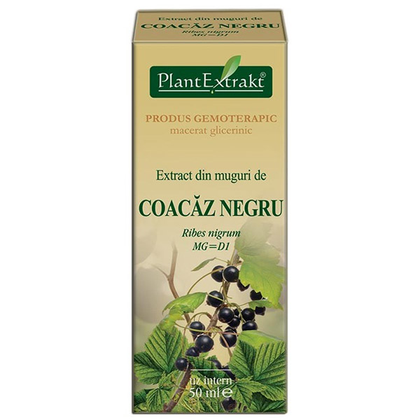 PlantExtract Extract din muguri de coacaz negru 50 ml